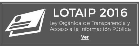 lotaipnew2